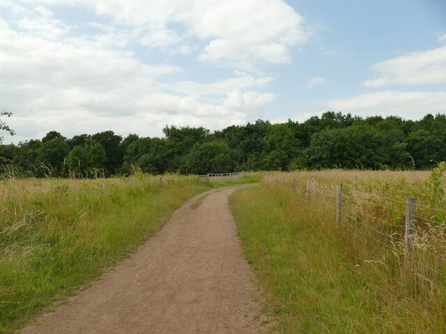 Bridleway towards Swillington