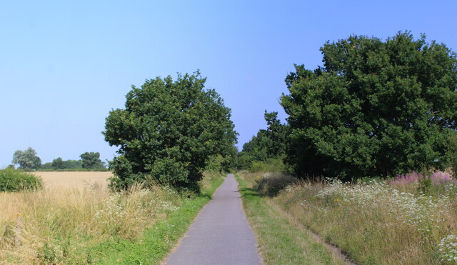 York and Selby Path between Naburn Wood and Moor Lane