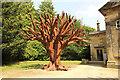SE2812 : Iron Tree by Richard Croft