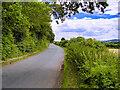 SE1488 : Wood Lane by David Dixon