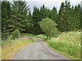 NT0519 : The road to Fingland farm by M J Richardson