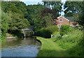 SJ5659 : The Mill next to Tilstone Mill Bridge No 106 by Mat Fascione