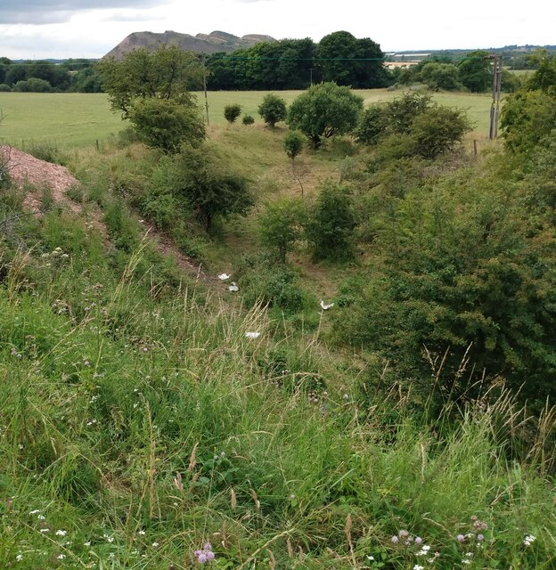 Old railway cutting by Jim Smillie