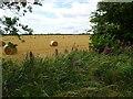 SO8695 : Bale Field by Gordon Griffiths