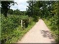 SO6412 : Cycleway near Dilke Hospital by Philip Halling
