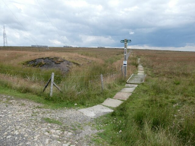 Path on the summit of Winter Hill