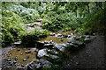 SK2976 : Bridleway crossing a brook by Bill Boaden