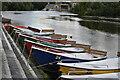 SE2045 : Hire boats on the River Wharfe at Otley by David Martin