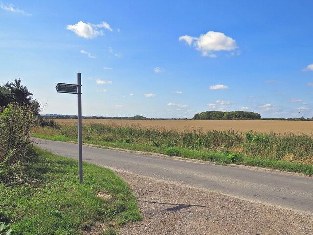 High summer in South Cambridgeshire