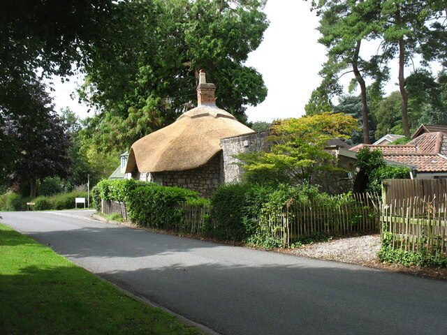 New thatch in Stoke Bishop