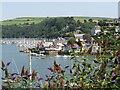 SX8850 : Kingswear - Dart Estuary by Colin Smith