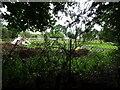 SO9093 : Farm View by Gordon Griffiths