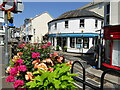 SX8751 : Dartmouth - Lower Street by Colin Smith