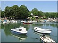 SX8751 : Dartmouth - Boat Float by Colin Smith