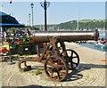 SX8751 : Dartmouth - Cannon by Colin Smith