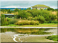 NY0565 : Caerlaverock Wetlands Centre, Folly Pond by David Dixon
