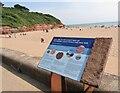 SY0179 : Exmouth - Jurassic Coast by Colin Smith