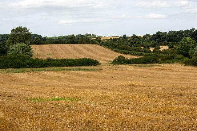 Fields around the Money Hill region, Ashby-de-la-Zouch