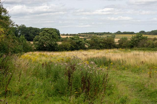 An empty field in the Money Hill region, Ashby-de-la-Zouch