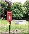 TQ5365 : Postbox, Crockenhill Lane by PAUL FARMER