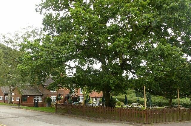Broad Oak, Strelley
