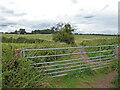 SO8751 : Bridleway towards Crookbarrow Hill, Norton, Worcestershire by Chris Allen