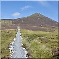 NN9268 : New path at the foot of Carn Liath by Richard Webb