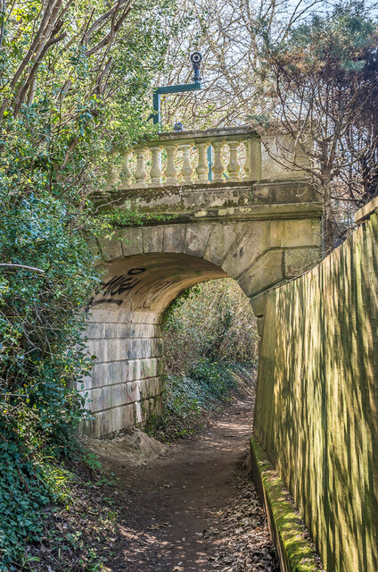 Bridge to nowhere by Ian Capper