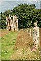 TQ2057 : The Regiment of Trees by Ian Capper