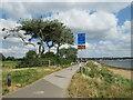 SZ0290 : Shared use path alongside Poole Harbour by Malc McDonald