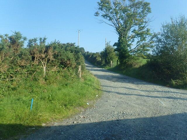 Farm access road off the B180 (Bryansford Road)