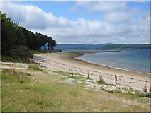 NR9284 : Beach at Otter Ferry by Thomas Nugent