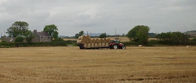 Gathering straw bales at Sidderyford