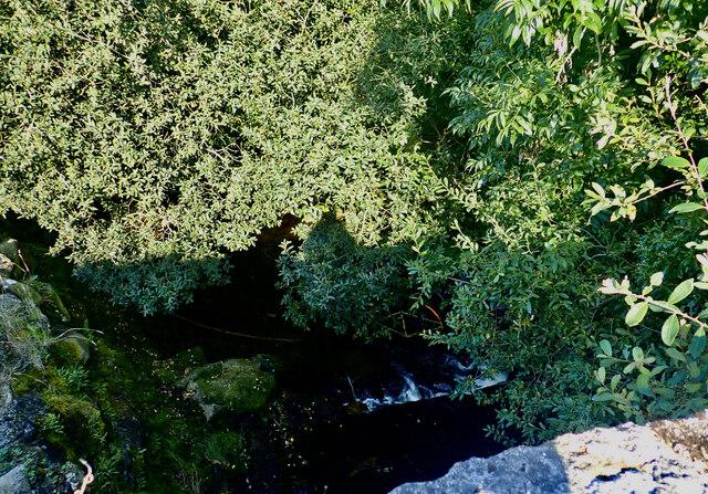 Yellow Water at Island Road bridge, Tullyframe