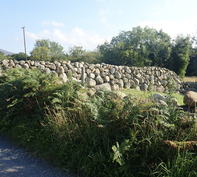 Single thickness dry stone wall between Island Road and the Yellow Water river