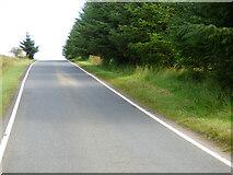 NR9474 : The B8000 road by Thomas Nugent