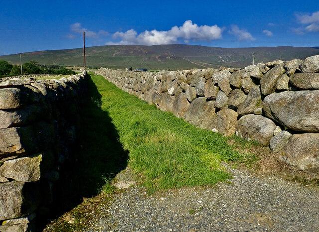 Field access green lane off Island Road