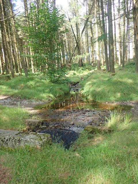 Stream entering culvert beneath a path in Crocknafeola Forest