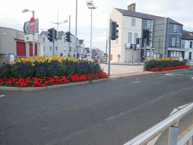 Flowery traffic island on the Central Promenade, Newcastle