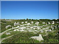 SY6872 : The Circle of Stones, Tout Quarry Sculpture Park, Isle of Portland by Malc McDonald
