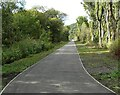 NS4573 : New path by Richard Sutcliffe