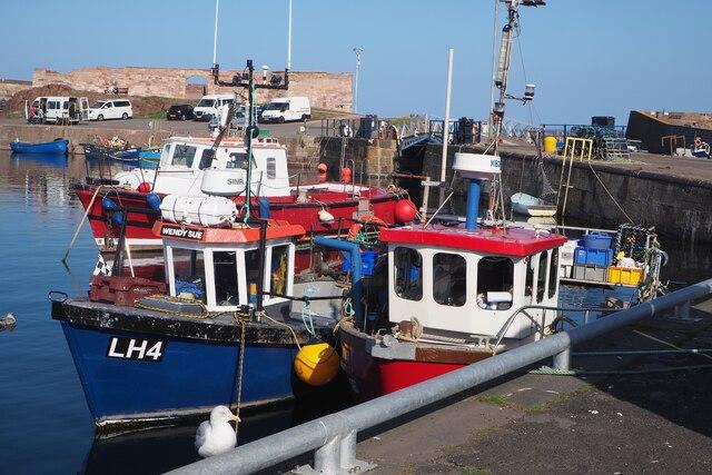 Fishing Boats in the Sunshine at Dunbar