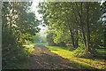 SP1240 : Near Broad Close Farm by Derek Harper