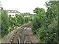 SZ1192 : Railway near Boscombe by Malc McDonald
