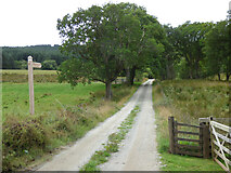 NS0373 : Way-marked route at Rhubodach Cottage by Thomas Nugent
