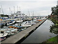 SZ3395 : Boats moored on the Lymington River by Malc McDonald