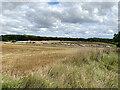 SP3468 : HS2 enabling works near Cubbington, September 2021 (2) by Robin Stott