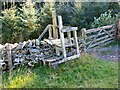 NT4328 : Stile at Traquair Plantation by Jim Barton