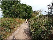 SK1606 : Runners on Hopwas Hays Lane by Richard Law