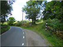 NR9379 : Passing place on the B8000 road by Thomas Nugent